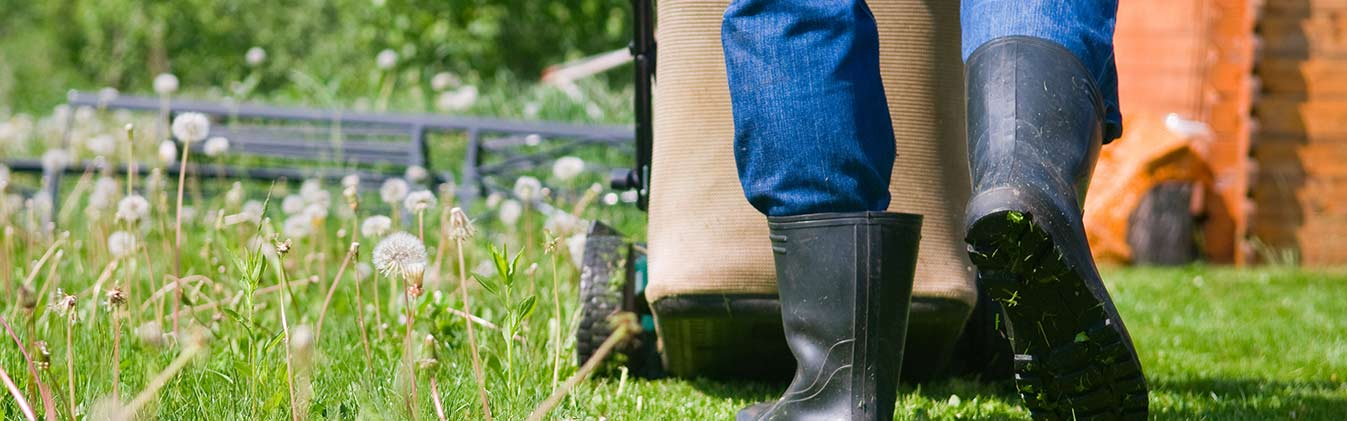 Don't waste your free time – let our  gardeners help you